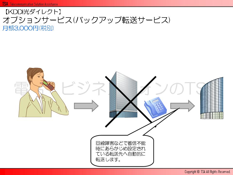 オプションサービス(バックアップ転送サービス)